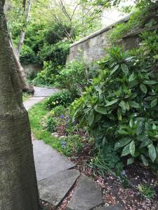 St. Andrews garden