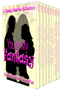 You're My Fantasy Boxed Set